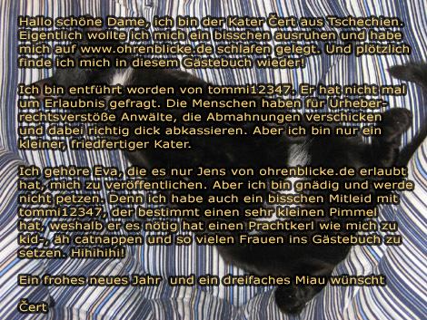 Evas Kater Čert wurde entführt.