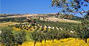 Tunesien - Landschaft bei Dougga