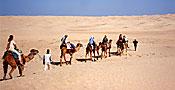 Tunesien - Saharatour