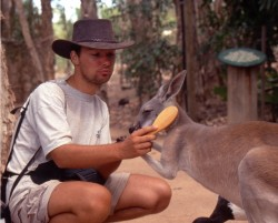 Jens bürstet ein Känguru